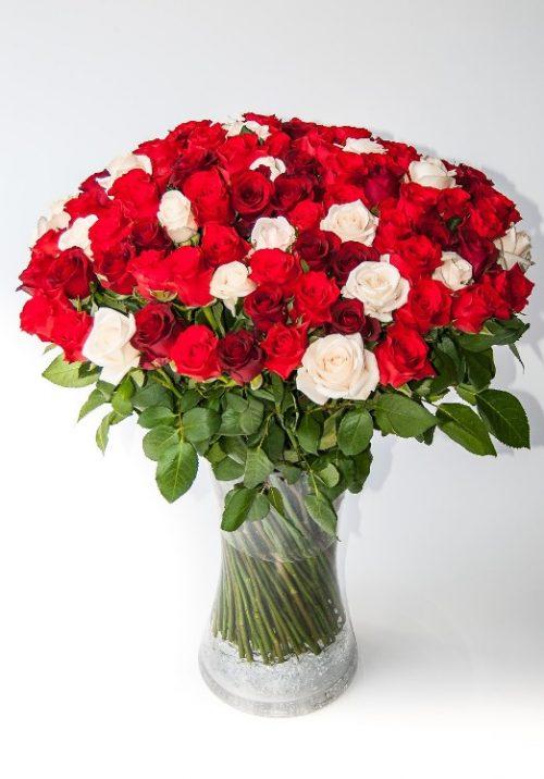 My love (100 roses)