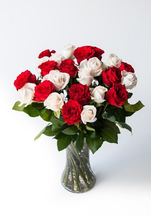 Love poem (24 roses)