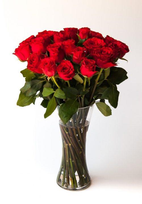 Rapsody of love (24 roses)