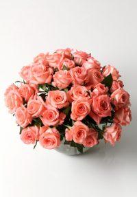 Spring breath (30 roses)