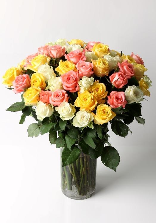 Dawn (50 roses)