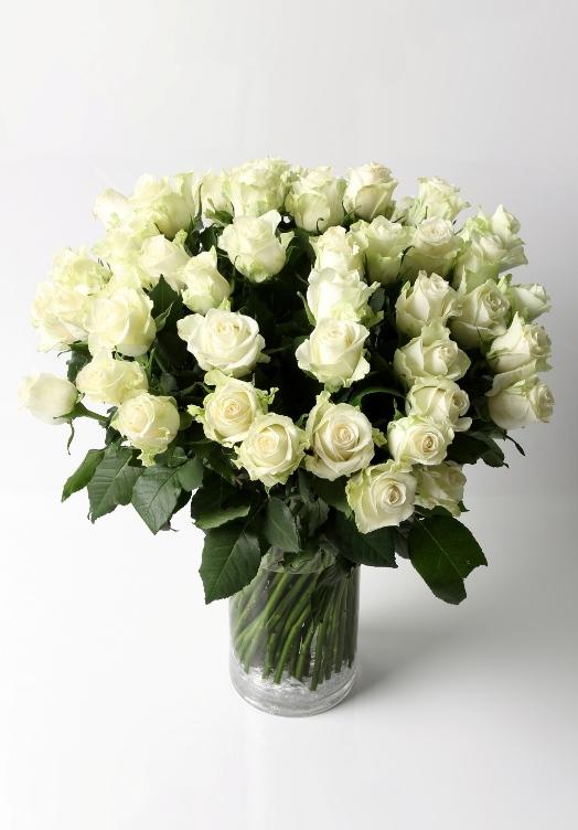 Adagio (50 roses)