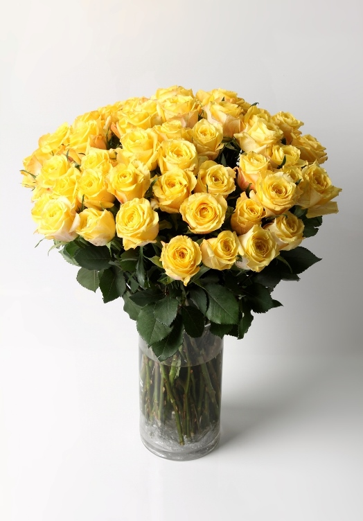 Celebration (50 roses)