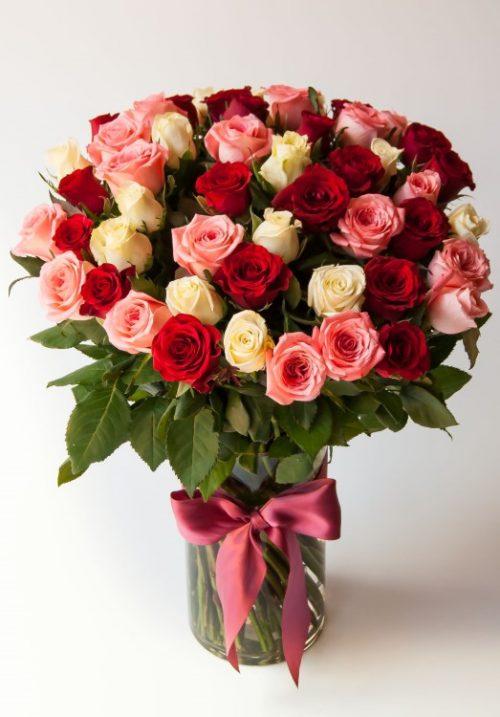 Jubilant (50 roses)