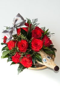 Amour Hedghog (15 roses)